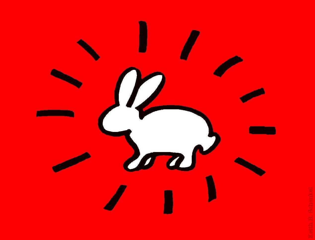 Radiant-Rabbit