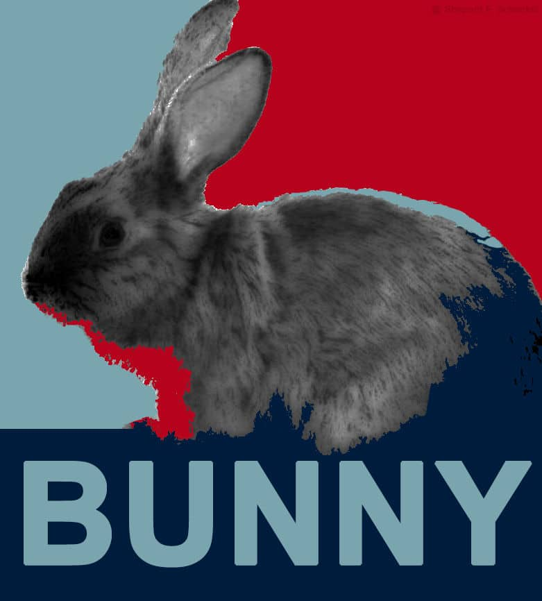 Shepard Fairey - Bunny